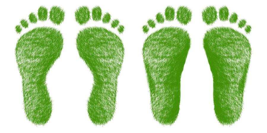 flat feet water test